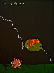 Artwork about Endangered Species | Frog painting | Painting of Golden Toad