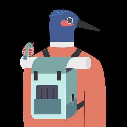 futurebirds Academy