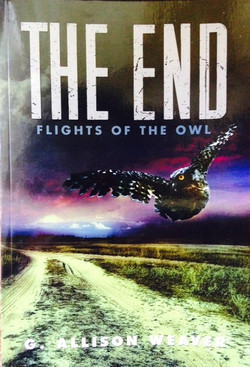 The End: Flights of the Owl