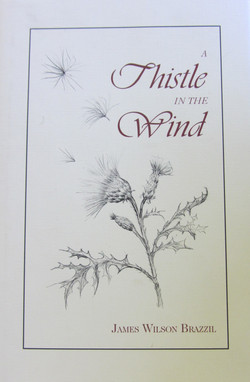 A+Thistle+In+the+Wind.jpg
