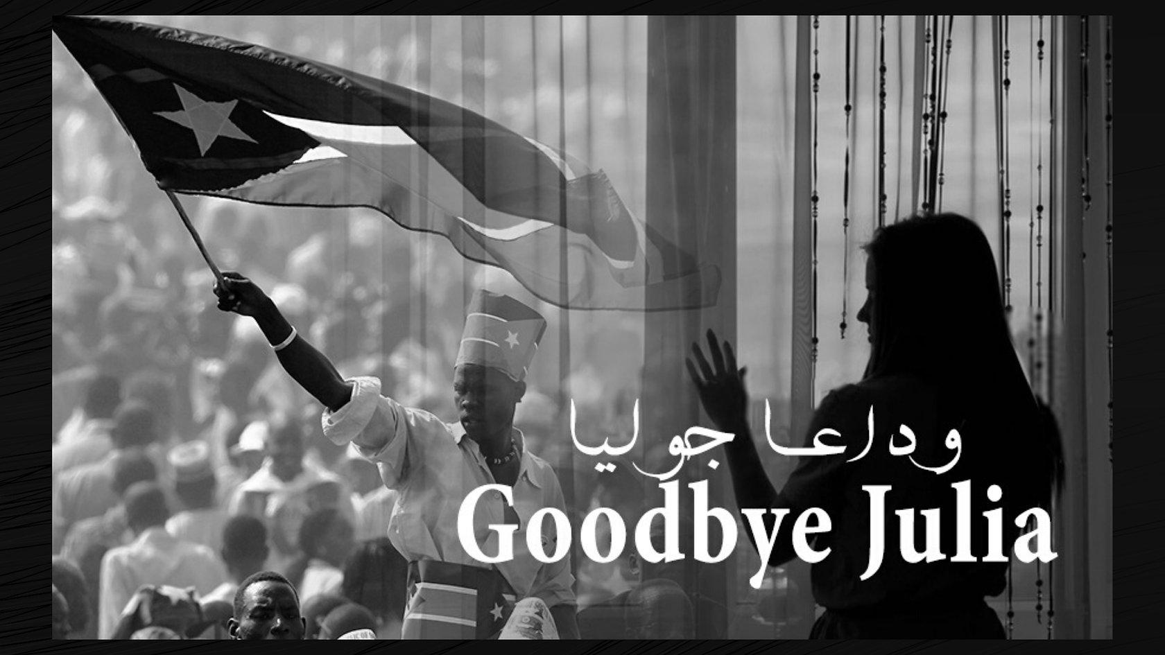 Goodbye Julia Presentation.jpg