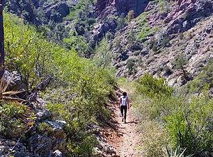 Trails_Barnhardt.jpg