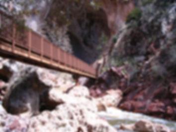 TNB_BridgeTrail.jpg