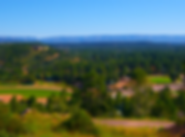 Payson_photogalleery_rumseypark.png