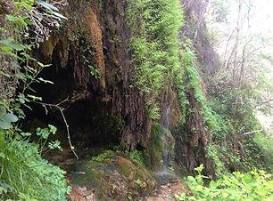 TontoNaturalBridge_waterfalltrail.jpg