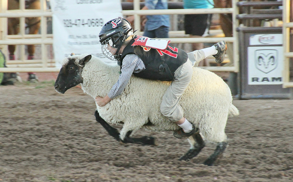 Mutton Bustin Payson Rodeo