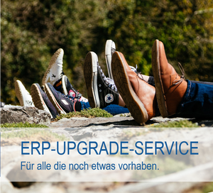 ERP-Upgrade-Service der ACE