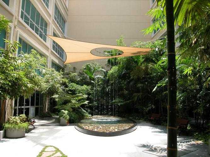 Oasis Raffles Hospital Singapore August