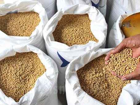 Impor Bahan Makanan ke Jateng Turun, Stok untuk Industri Aman