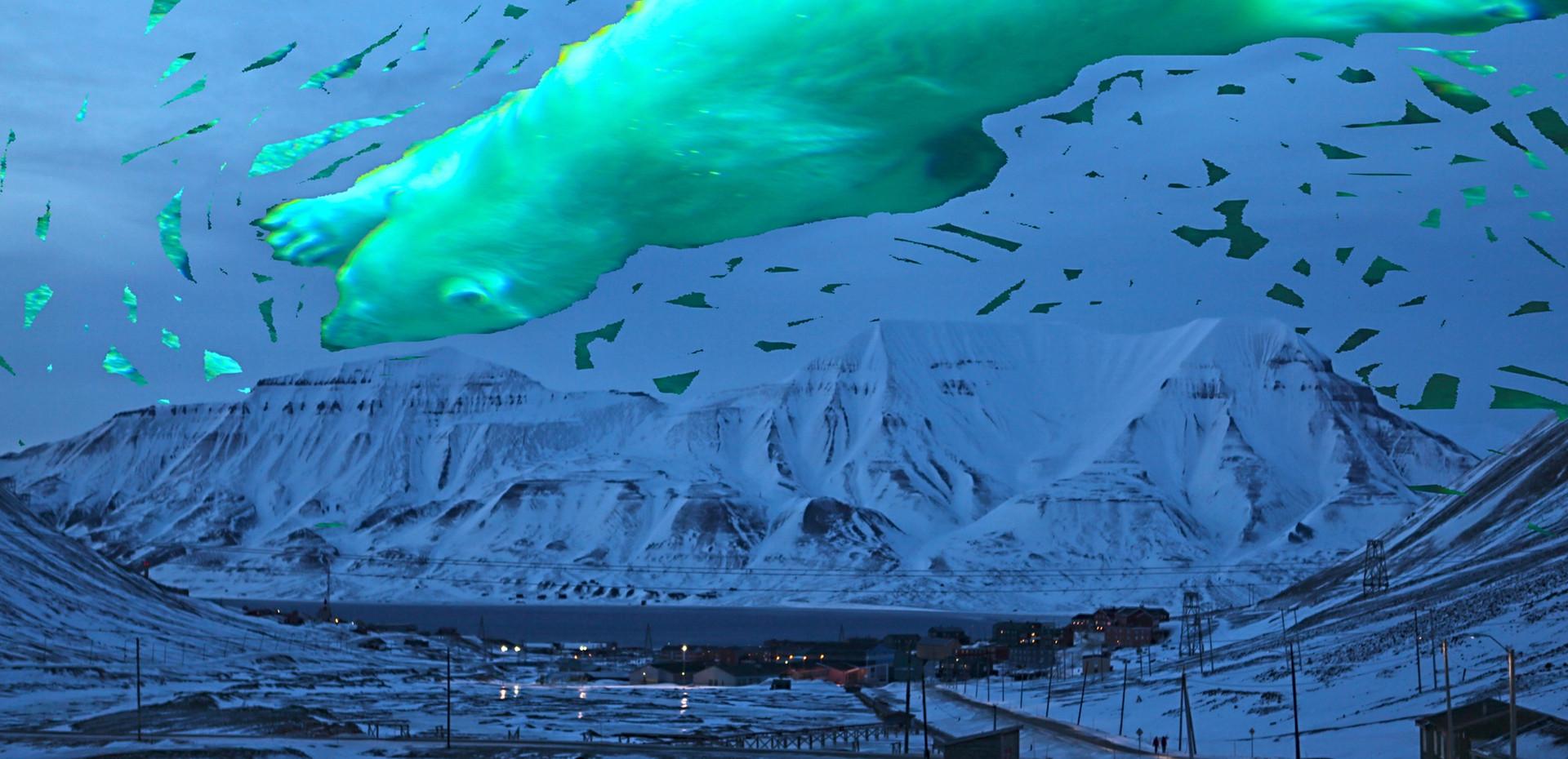 Bears Dream of Svalbard