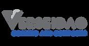 verseidag logo.png
