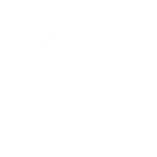 ICON2 wellness place white.png