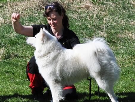 Polarhundshelg 6-7 sept 2014 Tångahed, Vårgårda