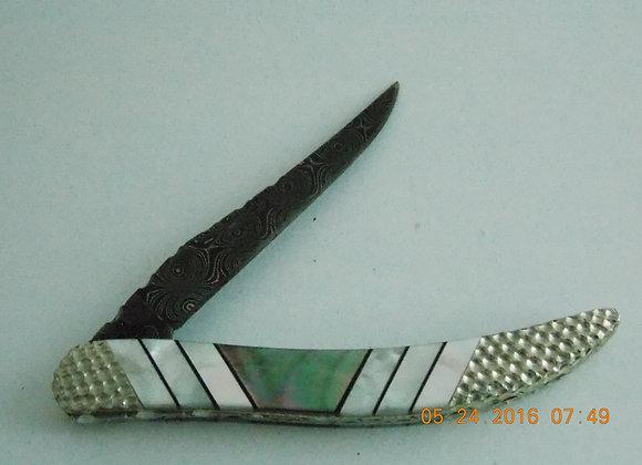 Case Toothpick-3