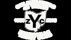 40 logo white.png