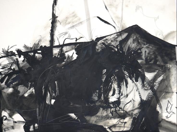 Black Tropics, 90 x 56 cm