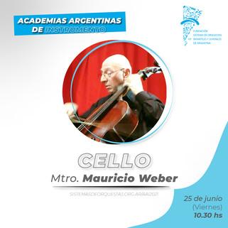 CV Mtro. Mauricio Weber