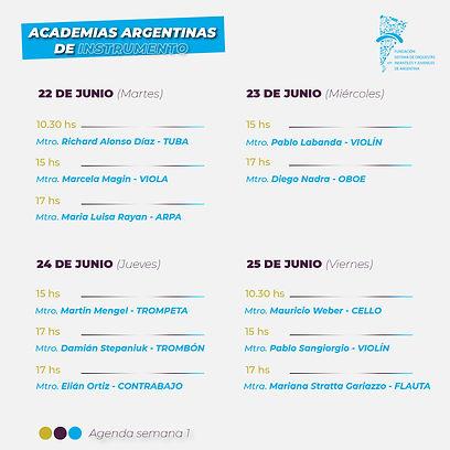 ACADEMIAS ARGENTINAS DE INSTRUMENTO FLYE