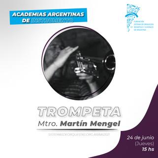 CV Mtro. Martín Mengel