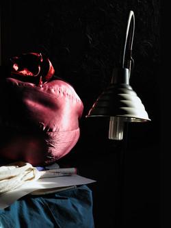 foto con scultura morbida; Ermafrodi