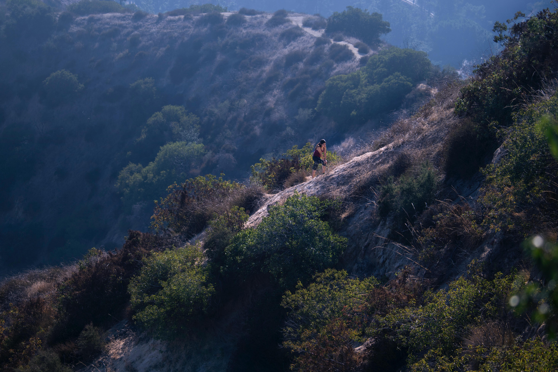 • Climbing