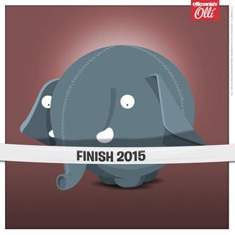 FINISH 2015.jpg