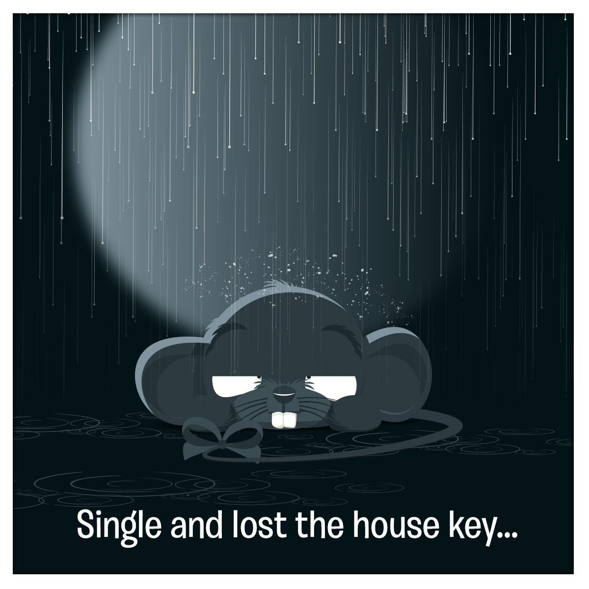 CARTOON HOUSEKEY