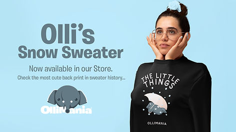 OLLI SWEATER.jpg