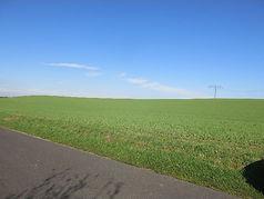 Mecklenburg 3.jpg