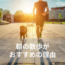 朝の散歩はストレスの緩和に最適!