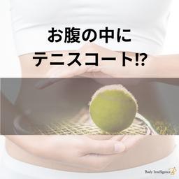 腸を広げるとテニスコートができる!?