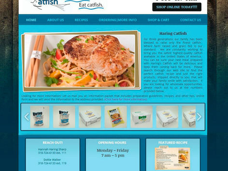 Haring Catfish Web Design