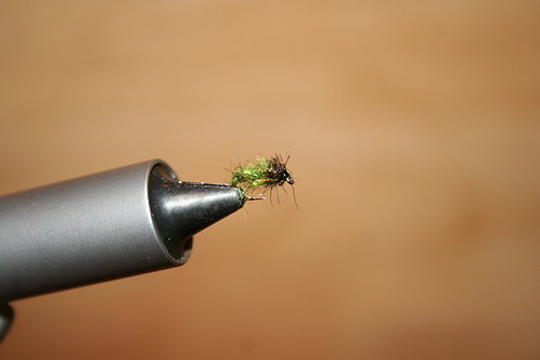 Crystal Caddis Larva
