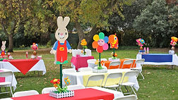 baby first party