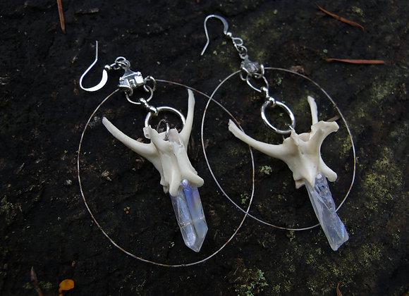 Crystal Spine Hoops