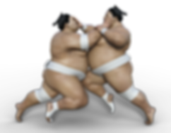 sumoringer-3199591_960_720.png