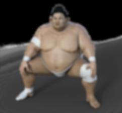 sumoringer-3196755__340.png