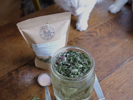 Herbal Hydration for Summer