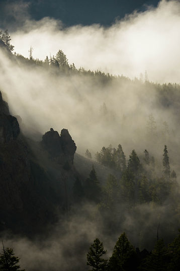 Morning Light At Tower Falls (2).jpg