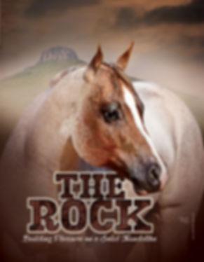The Rock AQHA Stallion