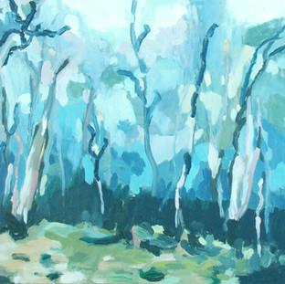 Barrington Trail Dusk