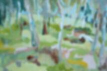 Girrba Meadow.jpg