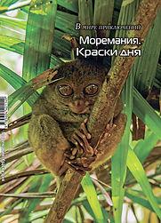 moremania_cover_08-1.jpg