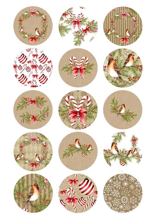 CÍRCULOS DE 5 CM | Natural Christmas