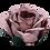 Thumbnail: ROSA VELHO   12-18 Unidades {OLD ROSE   12-18 UNITS}   A partir de {Start at}