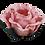 Thumbnail: ROSA SECO | 12 Unidades {ENGLISH ROSE | 12 UNITS} A partir de {Start at}