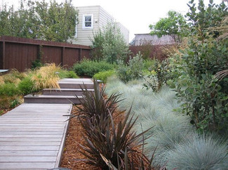 Native Backyard Garden with Deck Walkway