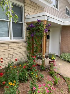 Native Flower Planting with Cedar Trellis, Skokie IL