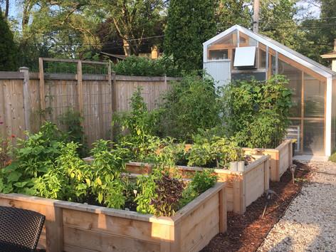 Backyard transformation in Wilmette, IL