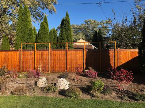 Wilmette Edible Trellises and Cedar Fence